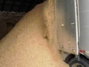 combine and tri-axle grain truck